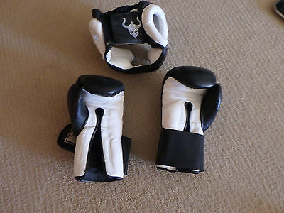 Warrior International Sparring Headgear and Mitts
