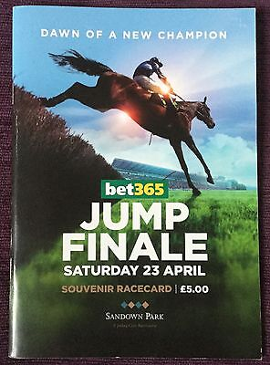 Signed Race Card 2016 Jump Finale Dawn Of New Champion, Signed Richard Johnson