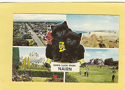 GOOD  LUCK  from   NAIRN  CAT s      Highland    ,  SCOTLAND      (R51)