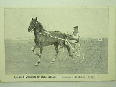 Sport-Horse Racing-Florence-Mulina-O8L-S61174