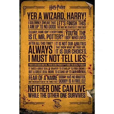 Official Licensed Product Harry Potter Poster Quotes Fun Fan Wall Gift New