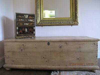 Amazing, Extremely Rare Size Blanket Box Chest / Coffee Table / Display