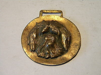 Vintage Brass Pocket Watch Fob Of A Shaggy Spaniel Dog's  Face