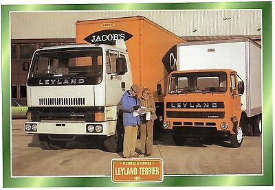 Leyland Tippers               Glossy   Picture (T195)