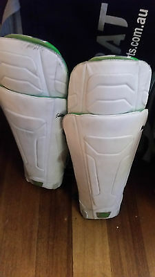 Cricket Pads Adult