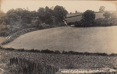 Near Coulsdon Common, Surrey, Real photo, old postcard, unposted