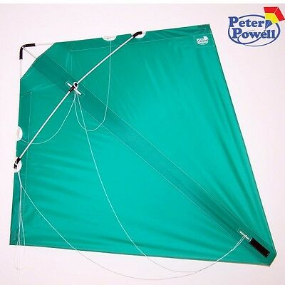 PETER POWELL Dual Line Stunt Kite MKIII GREEN - Adults Kids Outdoor Sport Toy