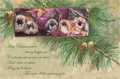 Pekingese Dogs in Pine Boughs ~ LARGE New Christmas Note Cards