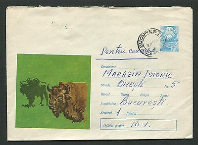 ROMANIA TIERE 1973 ANIMALS BISON WISENT BUFFALO Ganzsache Cover d4612