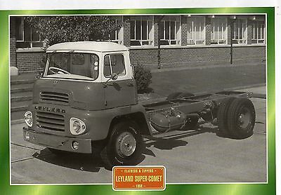 Leyland Super-Comet                 Glossy   Picture (T275)