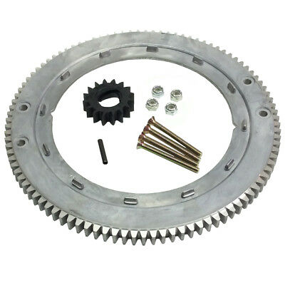 Flywheel Ring Gear Briggs 399676 392134 696537 For 28