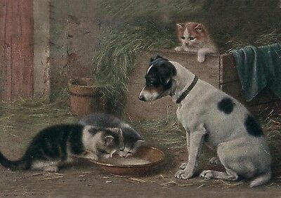 Jack Russell Terrier Puppy & Kittens 1920's  LARGE New Blank Note Cards