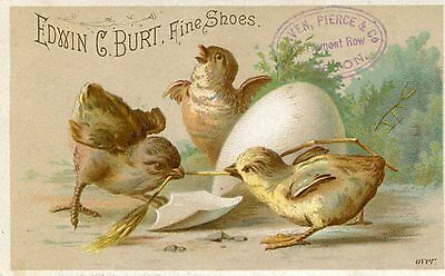 4 Victorian Tr,Fine Shoes w. Chicks,Egg front,Jesters,Tea Store in Bangor,Maine