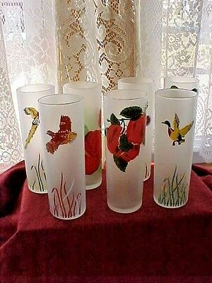 Vintage Tall Libby Frosted Collins/Iced Tea Glasses ~Birds~Flowers~Fruit~Seven~