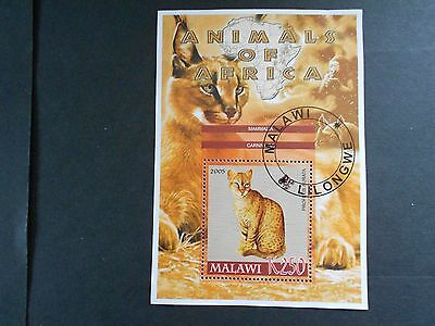 MALAWI 2005 Mini Sheet with a Type of  Cat on it