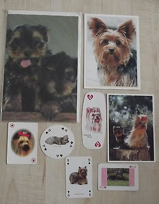 YORKSHIRE TERRIER new greeting card, postcards, playing cards,dog collection