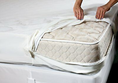 Bed Bug/allergy Relief Waterproof Zippered Terry Mattress Cover/protector Soft