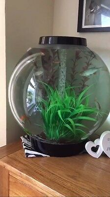 biorb fish tank 60 Litre with loads of extras