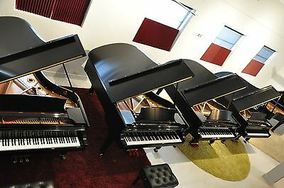 Used Steinway B, Late Model, 1995  Free Air Fare and Hotel, All Original Parts