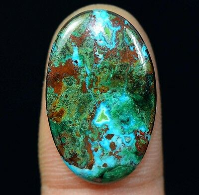 15.65 Cts. 100% Natural Chrysocolla Oval Cab Loose Gemstones Titanium_Gems