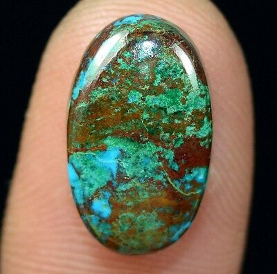 7.65 Cts. 100% Natural Chrysocolla Oval Cab Loose Gemstones Titanium_Gems