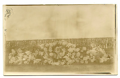 1900s FLOWERS ON A GRAVE RPPC REAL PHOTO POSTCARD WEIRD POST MORTEM DEATH CDV