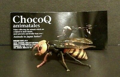 Rare Kaiyodo Choco Q Series 7 Asian Giant Hornet Wasp Bee Insect Bug Figure SP