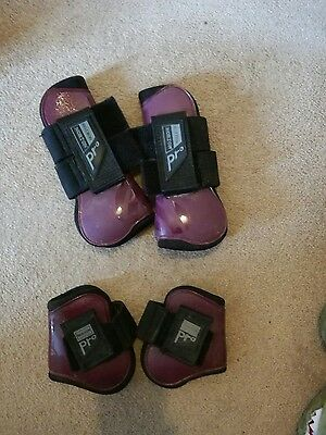 norton pro tendon and fetlock horse boots