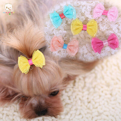 5PCS Dog Pet Hair Clips Yorkshire dogs Hairpin Grooming Lace Bowknot Accessories