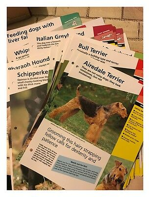 Atlas Editions: Dogs of the World Magazine Collection Inserts Approx. 800+ Pages