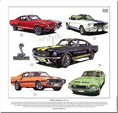 SHELBY MUSTANG Fine Art Print - GT350 Coupé Fastback GT350-H GT500KR illustrated