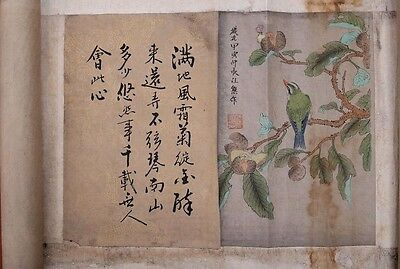 Long Rare Chinese Scroll Hand Painting Flowers Birds Marked RenXiong PP138
