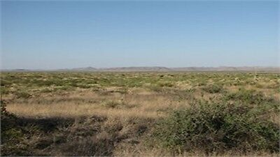 5.00 acre Lot in Southwest Sunsites Culberson County, Texas