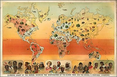 Human Race 1893 World Pictorial Map Animal and Vegetable Kingdoms POSTER 44205