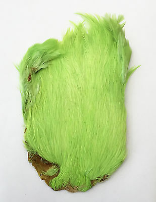 MDI Game Fishing Quality Dyed Light Green Indian Cock Cape Ref:A1 Fly Tying