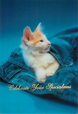 Celebrate Your Specialness Silvertab Levis White Cat Advertisement Postcard 6x4""