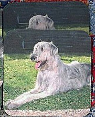 IRISH WOLFHOUND Rubber Backed Coasters #0639