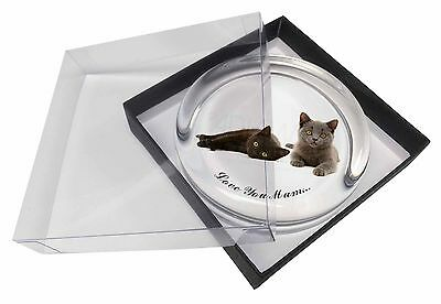 Kittens 'Love You Mum' Glass Paperweight in Gift Box Christmas Pres, AC-126lymPW