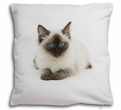 AC-85-CSB Adorable Birman Cat Black Border Satin Feel Cushion Cover With Pillow
