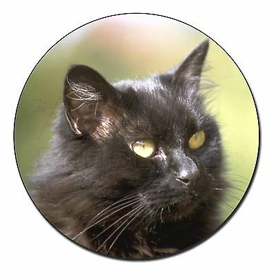AC-185FM Stunning Black Cat Fridge Magnet Stocking Filler Christmas Gift