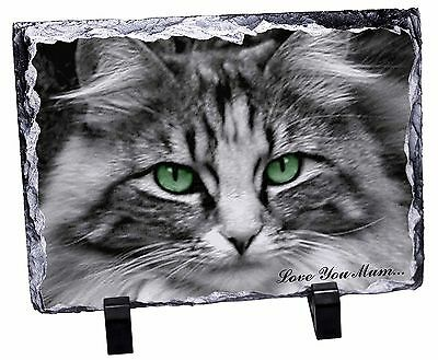 AC-1ySL Black Cat /'Yours Forever/' Photo Slate Christmas Gift Ornament