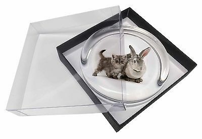 Silver Grey Cat and Rabbit Glass Paperweight in Gift Box Christmas Pres, AC-62PW