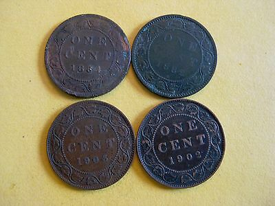 (4) Canada Large Cents 1882-H - 1884 - 1902  -1903 Circulated