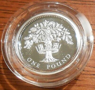 1992 United Kingdom Silver Proof One Pound Coin