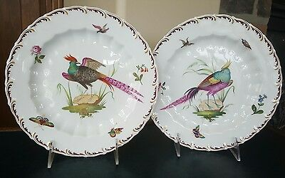 Antique hand painted porcelain plates Chelsea Bird pheasant gold anchor Samson