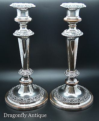 SUPERB Antique Georgian Gadrooned Tall Silver Plated Pair Candlesticks C 1840
