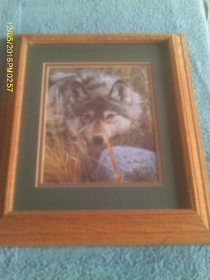 Oak Framed & Double Matted Print Picture of Grey Wolf