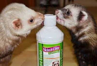 Ferretone Skin & Coat for Ferrets 16oz 8oz Bottles, Ferretvite Paste Bulk Deals!