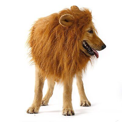 Pet Dog Costume Lion Mane Wig OUTAD Clothes Festival Fancy Dress up with ear