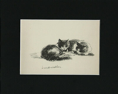 Vintage Cat Kitten Print 1946 by Lucy Dawson 8X10 Matted